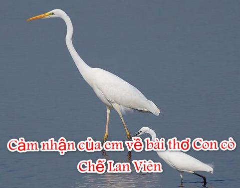 Cảm nhận của em về bài thơ Con cò – Chế Lan Viên